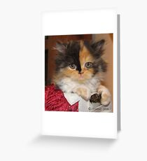 So Calm Greeting Card