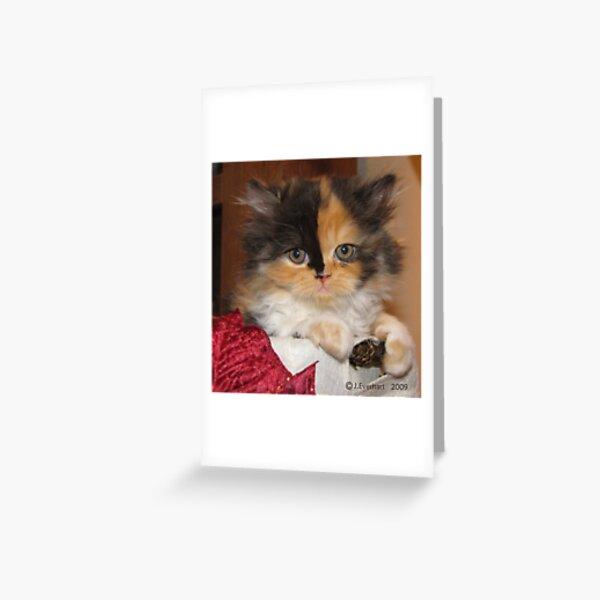 So Calm Greeting Card