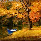 Autumn - My favorite fishing spot by Michael Savad