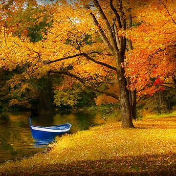 Autumn - My favorite fishing spot by mikesavad