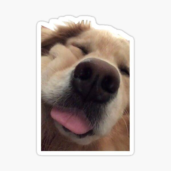 Venkman's Smoosh Face Sticker
