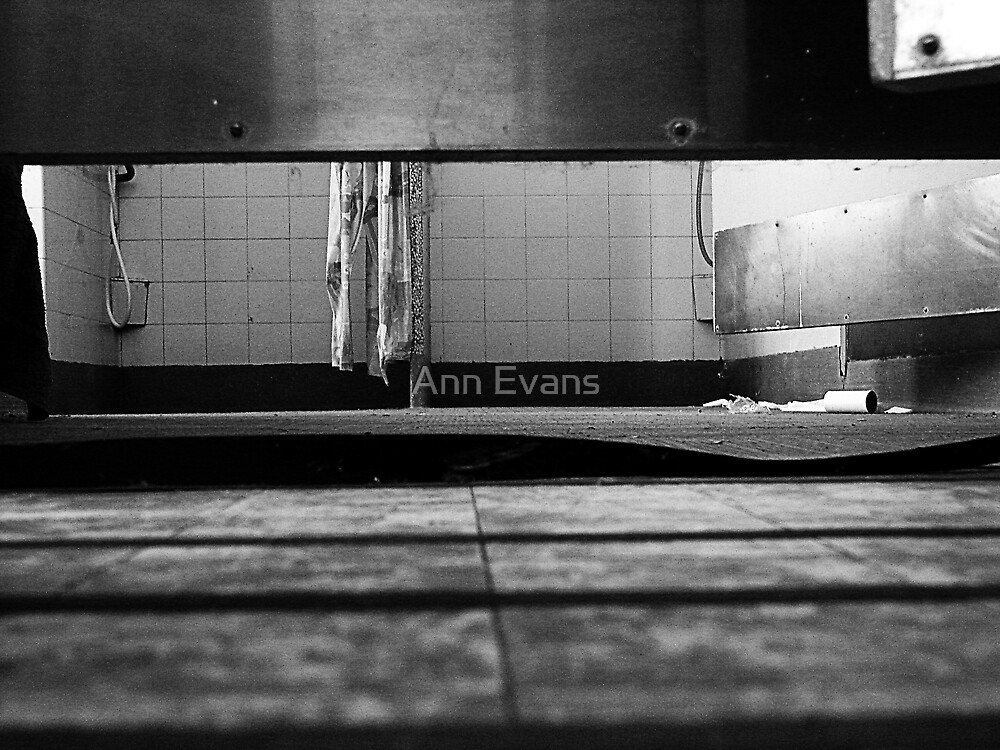 Everybody Wants To Know by Ann Evans