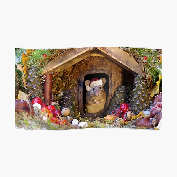 Christmas mouse in a log pile house Poster