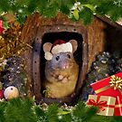 Christmas mouse in a log pile house  by Simon-dell