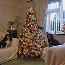 Charlie Girl and Poppy Beside the Christmas Tree by AnnDixon