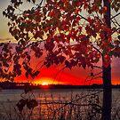 Beautiful Autumn by IanMcGregor