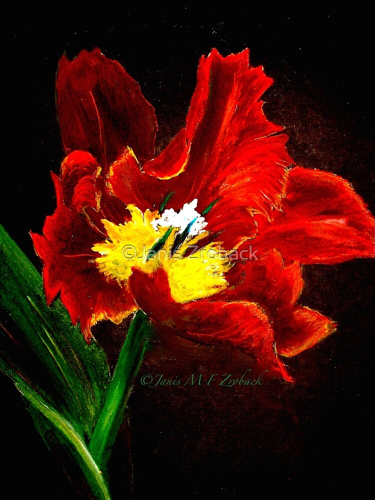 The Red Tulip by ©Janis Zroback