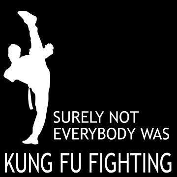 Kung Fu Fighting  by classydesignz