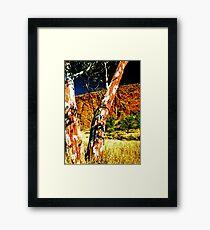 Gums Framed Print