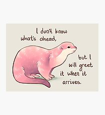 """I Don't Know What's Ahead"" Otter Photographic Print"