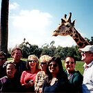 Giraffe and group by andytechie