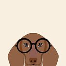 Dana - Dachshund portrait print with glasses - cute dog print by PetFriendly