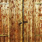 Old Wooden Doors by FrankieCat
