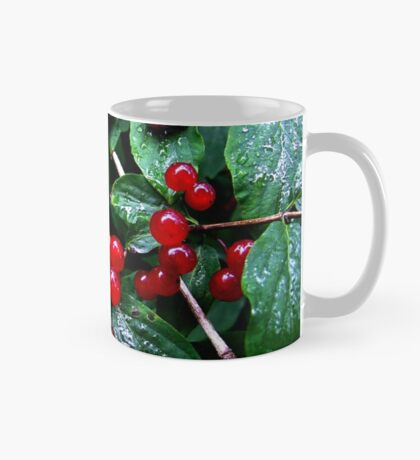 Rainy berries Mug