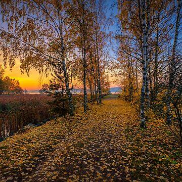 October Morning 15 by wekegene