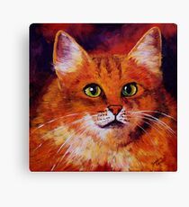 Longhaired Ginger Cat Canvas Print