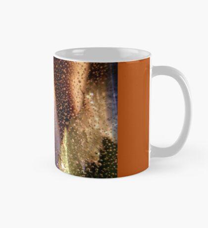 Vase2 Mug