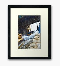 Grizzly Bear Drop Framed Print