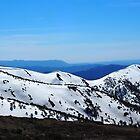 Razorback ridge by jayview