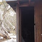 high country hut by jayview
