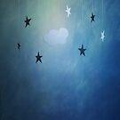 Twinkle, twinkle... by Catherine MacBride