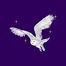 White snowy owl in the stars by jasmineberry
