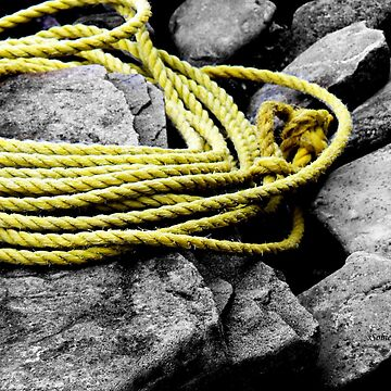 Rope on the Rocks! by rsobiera