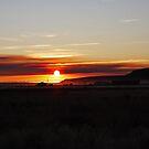 Malheur Sunset by Julia Washburn