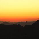 Lemmony Sunset by Judi FitzPatrick