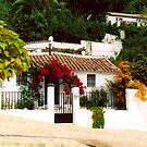 Cottage 2 Montecorto, Spain by groophics