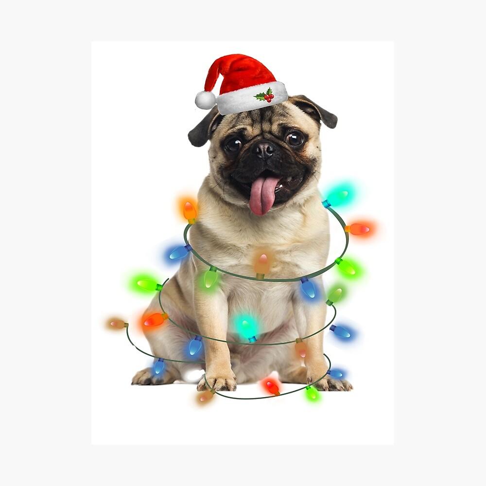 Pug light Christmas - Funny Ugly Photographic Print