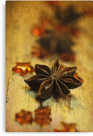 Star by Priska Wettstein