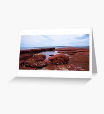 Bar Beach,NSW Greeting Card