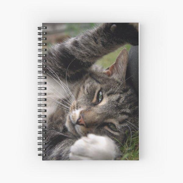 Playful Tiger Spiral Notebook