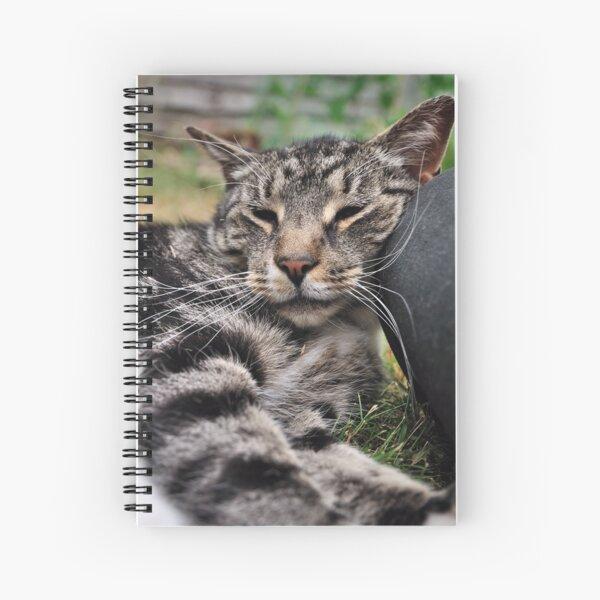 I Kneed a Pillow Spiral Notebook