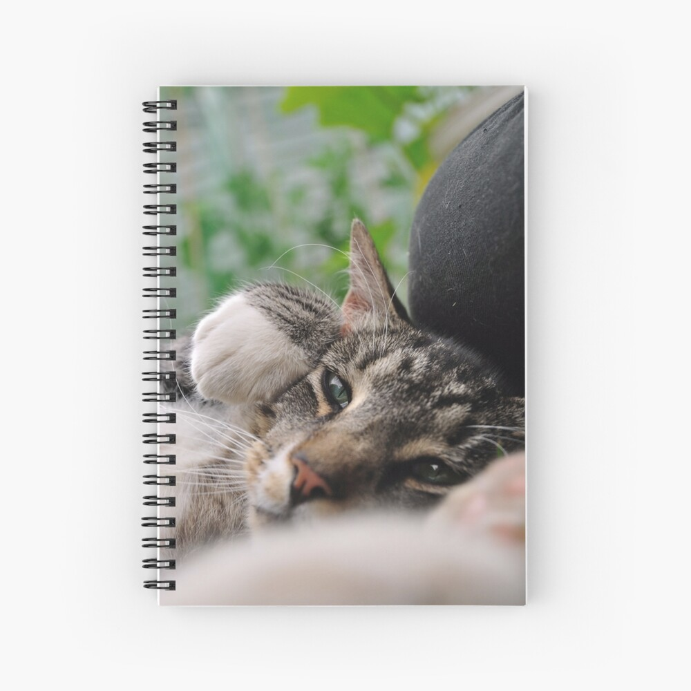 I'm a Tiger, Me Spiral Notebook
