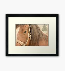 I once had a dream... Framed Print
