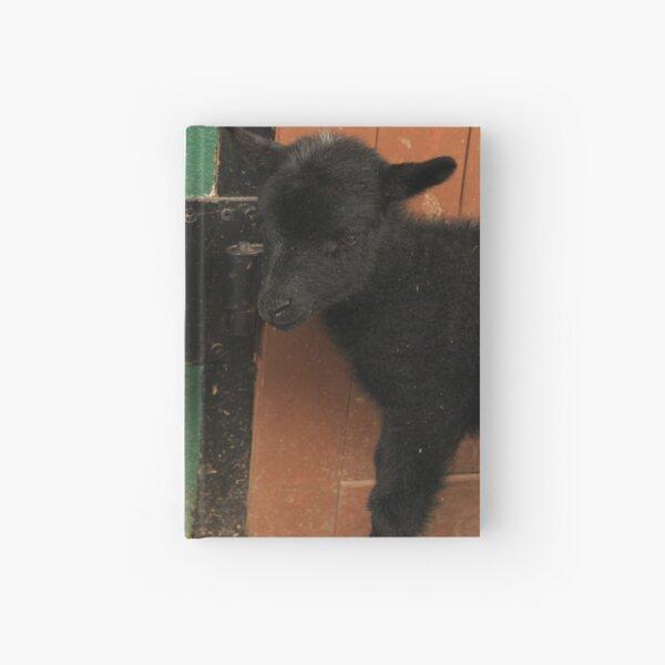 Vauxhall City Farm - Ewe & Lamb (Clover & Anise) Hardcover Journal