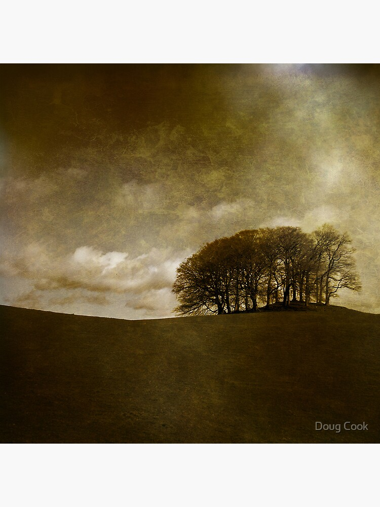 The Copse by DougCook