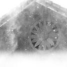 Snowing in Winter by Tjaša Rome