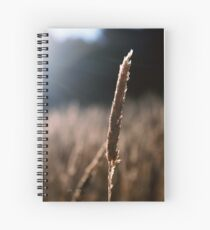 Dancing With The Light Spiral Notebook