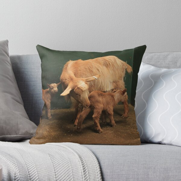 Vauxhall City Farm - Goat & Kids (Wilma, Pebbles & Rubble) Throw Pillow