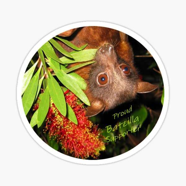 Batzilla - Proud Supporter, flying fox with flower  Sticker