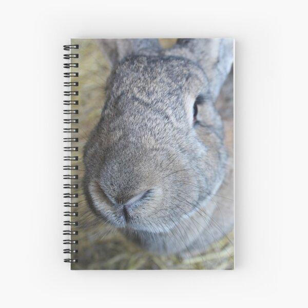 Vauxhall City Farm - Rabbit, Close Up (Misty) Spiral Notebook
