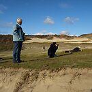 Photoshoot, Renesse, Zeeland Holland by Janone