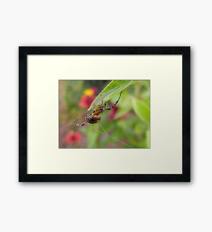 Spinning In The rain, Just Spinning In The Rain... Framed Print