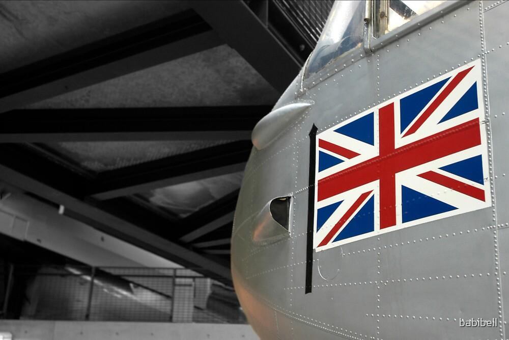 Plane & Flag by babibell