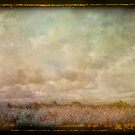 On the Prairie  by linaji