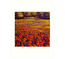Sonoma Spring Meadow Art Print