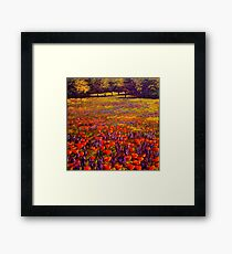 Sonoma Spring Meadow Framed Print